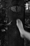 Extrait de L'Ouvreuse © Ernesto Timor